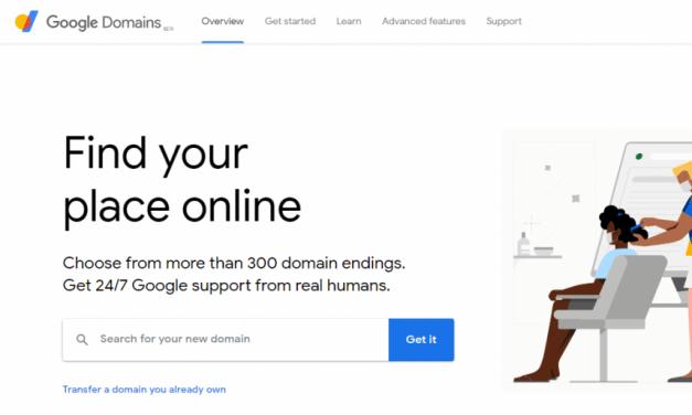Google Domain Dyn DNS setup.